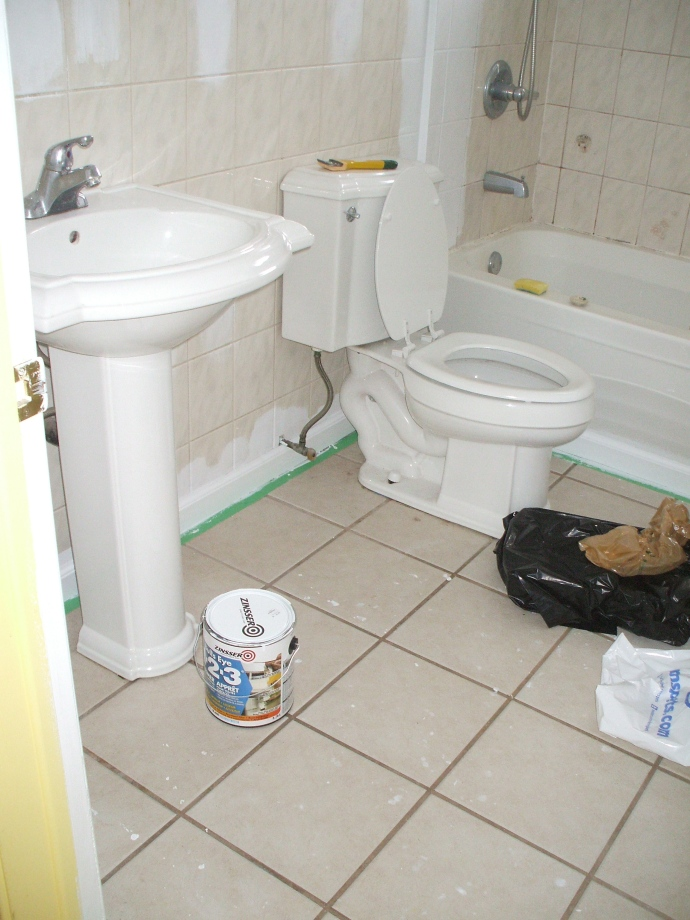 bathroom beforeish