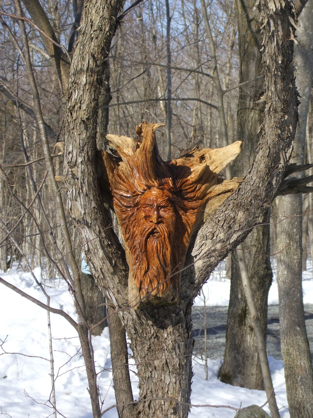 Wood Spirit Carving Tutorial Glossy16ecn