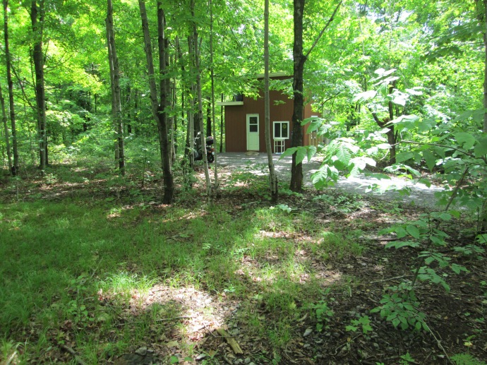 Tiny House Ontario in her green forest