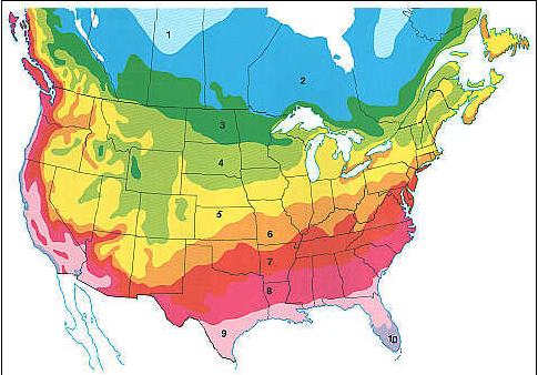 Planting zones in North America